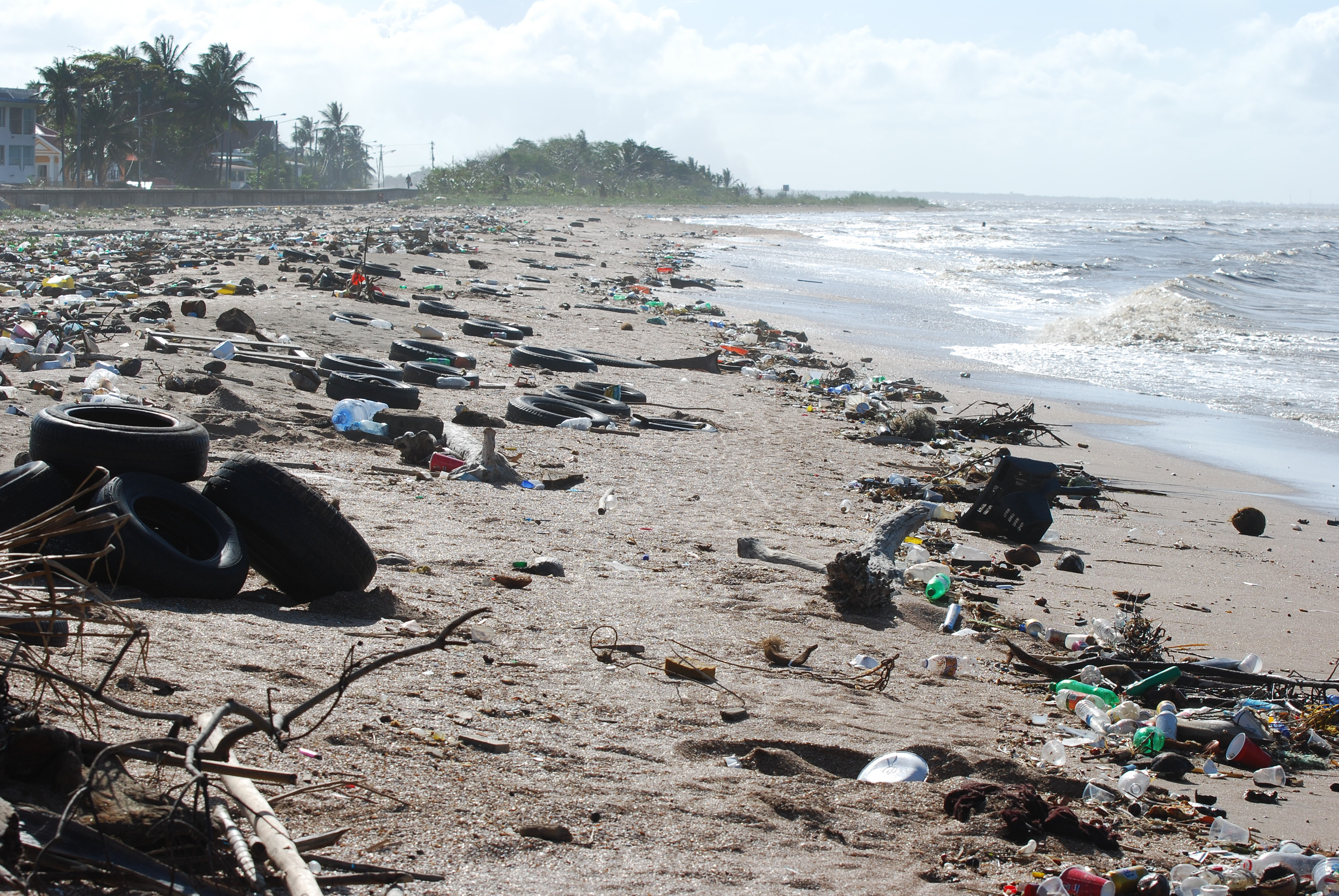 Los residuos lanzados al mar no desaparecen.