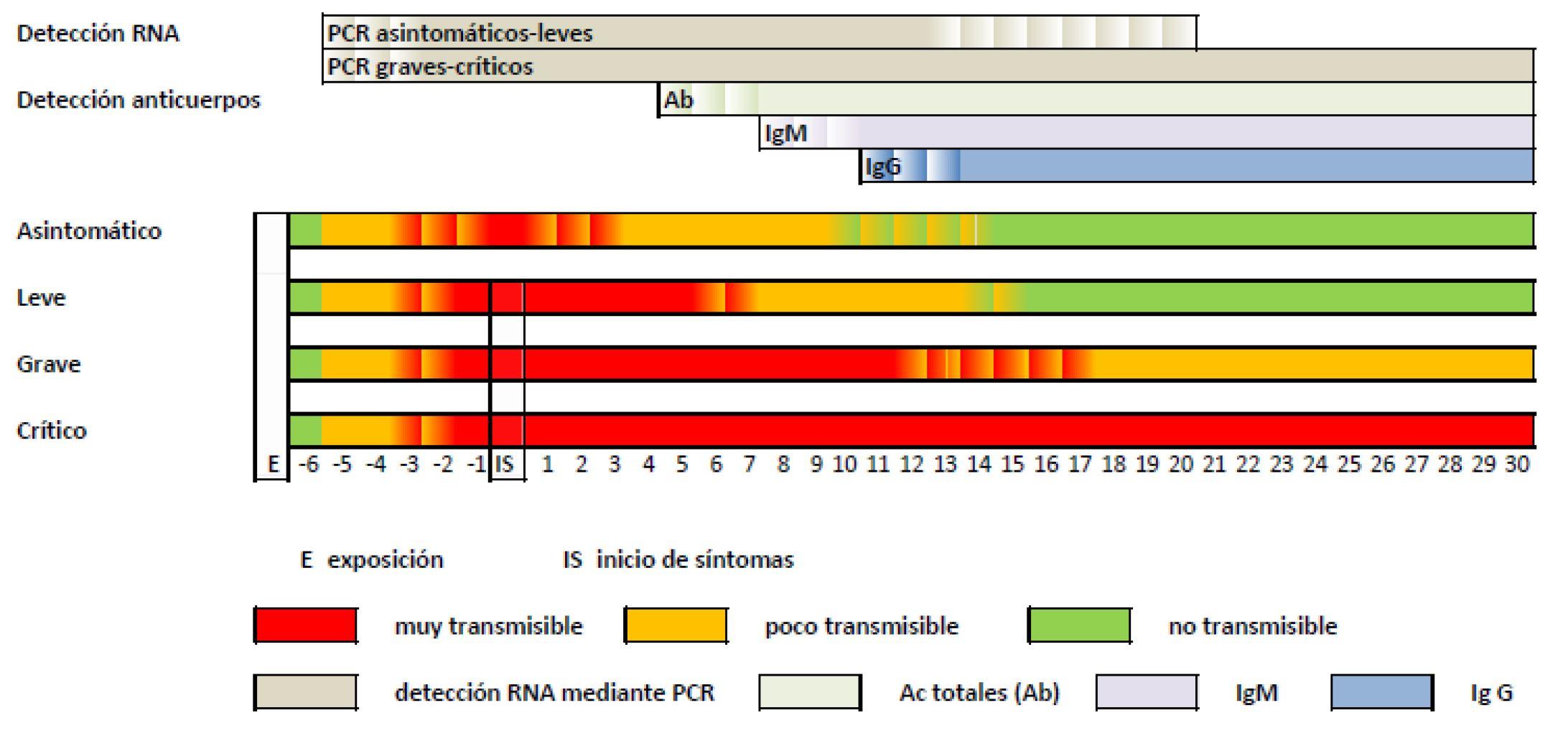 Interpretación de las pruebas diagnósticas frente a SARS-CoV-2 - Instituto de Salud Carlos III
